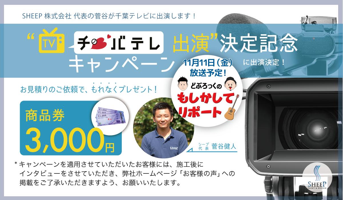 TV出演記念キャンペーン